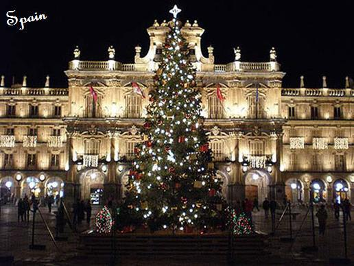 When Do Christmas Decorations Come Down In Spain : Happy holidays from stellabegonias